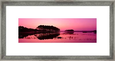 Panoramic View Of The National Forest Framed Print by Panoramic Images