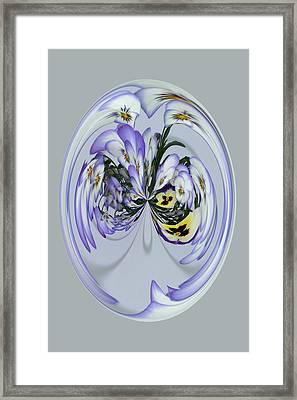 Pansy Series 501 Framed Print