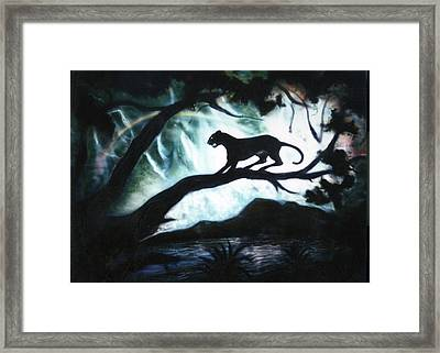 Panther Country Framed Print by Dan Townsend