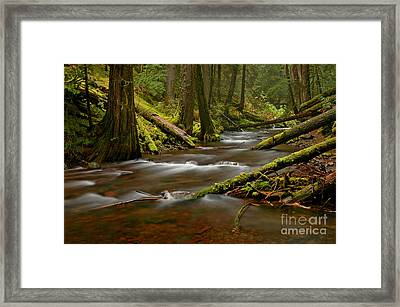 Framed Print featuring the photograph Panther Creek Landscape by Nick  Boren