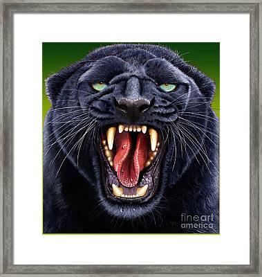 Panther Framed Print by Jurek Zamoyski