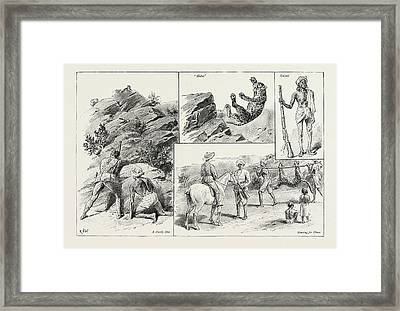 Panther Shooting In India Framed Print by Litz Collection
