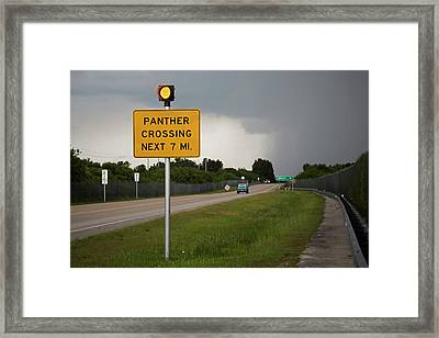 Panther Warning Sign Framed Print by Jim West