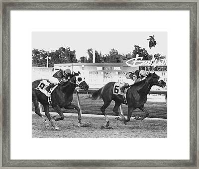 Papal Power Horse Racing Vintage Framed Print