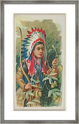 Papaw, From The Fruits Series N12 Framed Print by Issued by Allen & Ginter