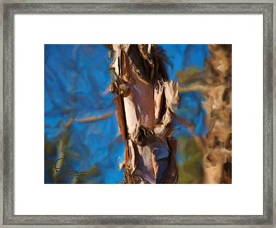 Framed Print featuring the photograph Paper Bark Birch by Ludwig Keck