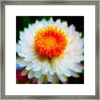 Framed Print featuring the digital art Paper Daisy by Chuck Mountain