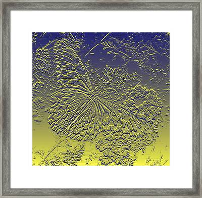 Paperkite Butterfly Abstract Framed Print