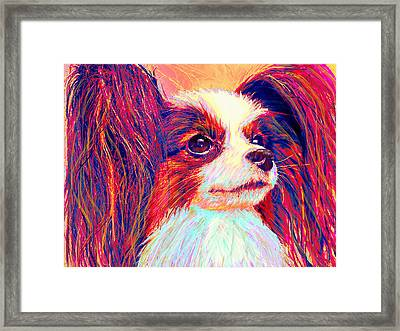 papillion II Framed Print by Jane Schnetlage