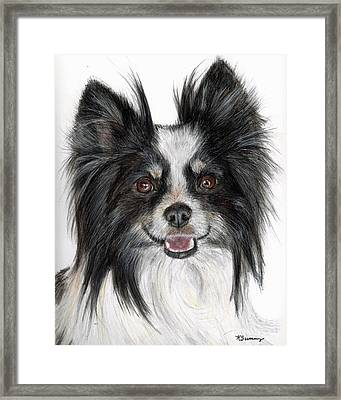 Papillon Painting Framed Print by Kate Sumners