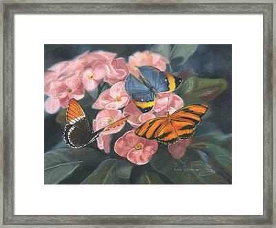 Papillons Framed Print