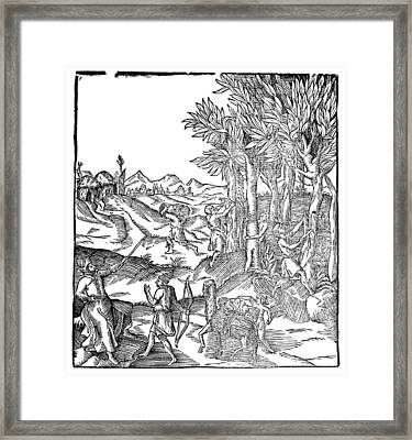 Par� Cinnamon, C1575 Framed Print