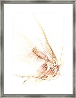 Paradiesfisch Framed Print by Torsten Bahr