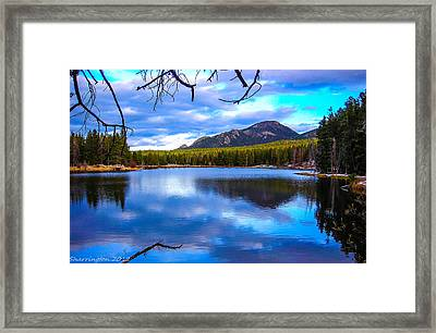 Framed Print featuring the photograph Paradise 2 by Shannon Harrington