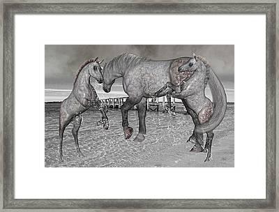 Paradise Framed Print by Betsy Knapp