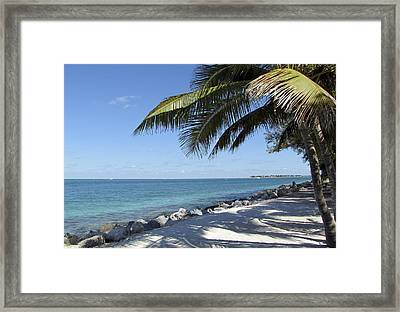 Paradise - Key West Florida Framed Print by Bob Slitzan