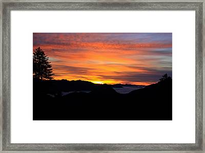 Framed Print featuring the photograph Paradise by David Stine