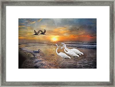 Paradise Dreamland  Framed Print by Betsy Knapp