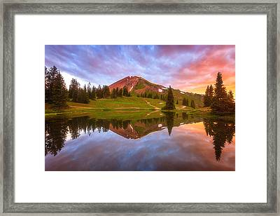 Paradise Dreams Framed Print by Darren  White