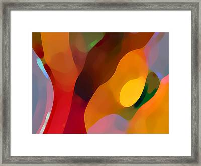 Paradise Found 3 Framed Print by Amy Vangsgard