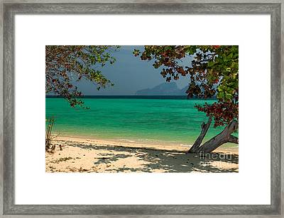 Paradise Found Framed Print by Adrian Evans
