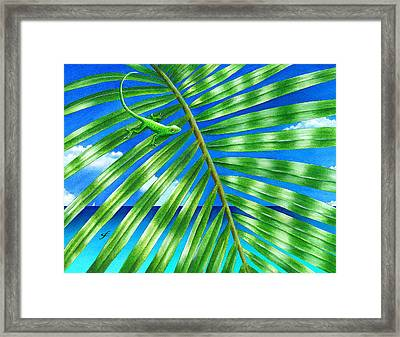 Paradise Frond Framed Print by Carolyn Steele