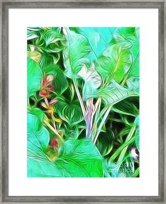 Paradise Framed Print by Kathie McCurdy