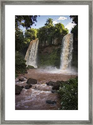Paradise Framed Print by Kim Andelkovic