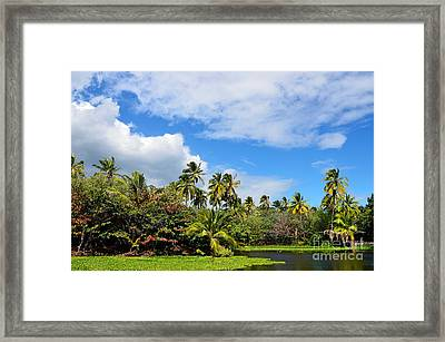Framed Print featuring the photograph Paradise Lagoon by David Lawson