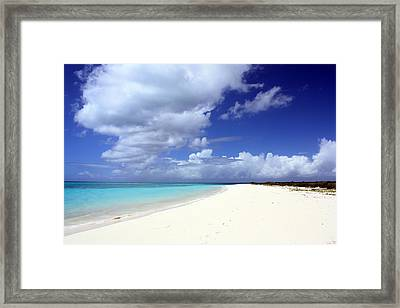 Paradise Framed Print by Laura Hiesinger