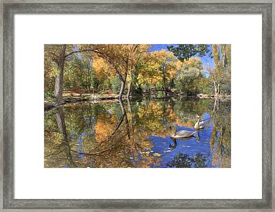 Paradise 2 Framed Print by Donna Kennedy