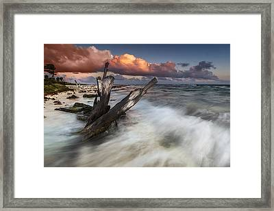 Framed Print featuring the photograph Paradise Lost by Mihai Andritoiu