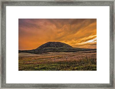 Paradise On Elk Mountain Meadows Framed Print