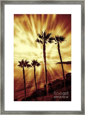 Paradise On The Beach Framed Print by Linda MatlowFour Palm trees red gold sunset on beach light rays