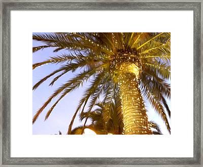 Paradise Palm Framed Print
