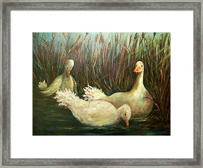 Paradise Pond,ducks  Framed Print
