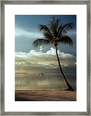 Paradise Reflections.. Framed Print