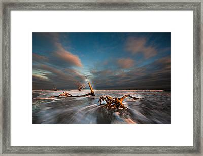 Framed Print featuring the photograph Paradise  by RC Pics