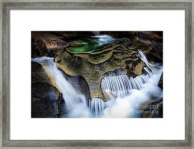 Paradise Rocks Framed Print by Inge Johnsson