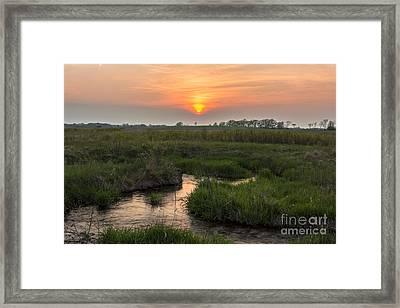 Paradise Springs... Framed Print