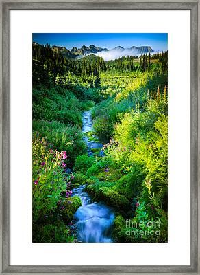 Paradise Stream Framed Print by Inge Johnsson