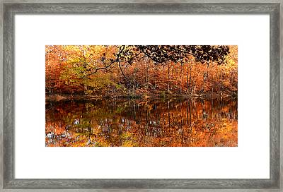 Paradiso Framed Print by Lourry Legarde