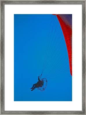 Paragliding Framed Print by Karol Livote