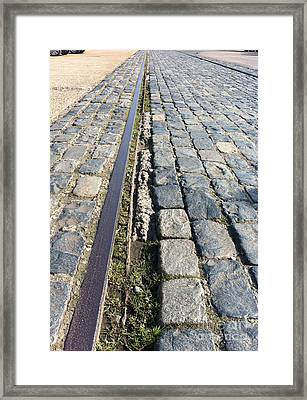 Paralell Lines Framed Print