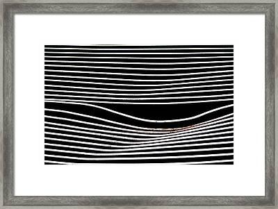 Paralell Lines Framed Print