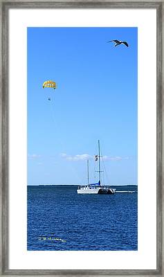 Framed Print featuring the photograph Parasailing by R B Harper