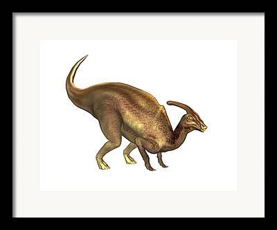 Parasaurolophus Framed Prints