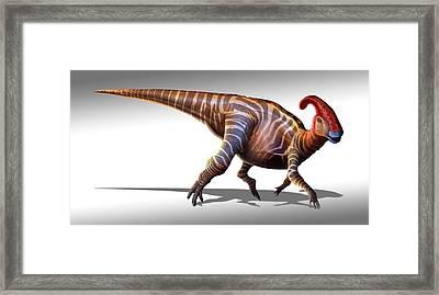 Parasaurolophus Dinosaur Framed Print by Mark Garlick