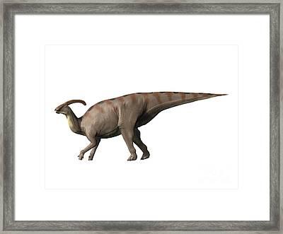 Parasaurolophus Dinosaur Framed Print by Nobumichi Tamura