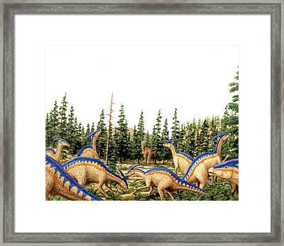 Parasaurolophus Dinosaurs Framed Print by Deagostini/uig